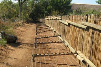 Farm security fences