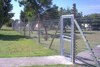 Palacade fences